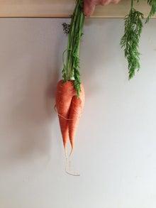 $家族で楽しく野菜をつくる方法