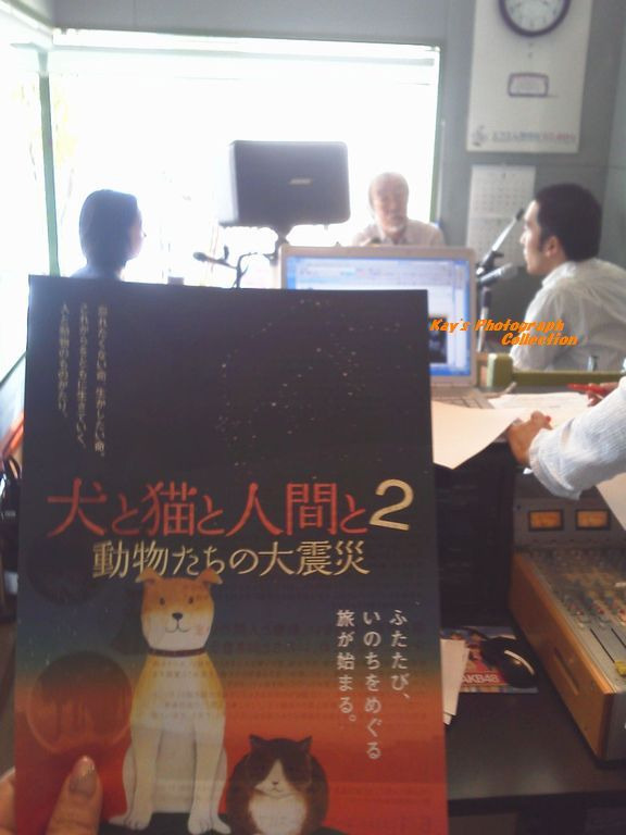 石塚恵子のおしゃべりモーニングのブログ-小室さんちらしB.jpg