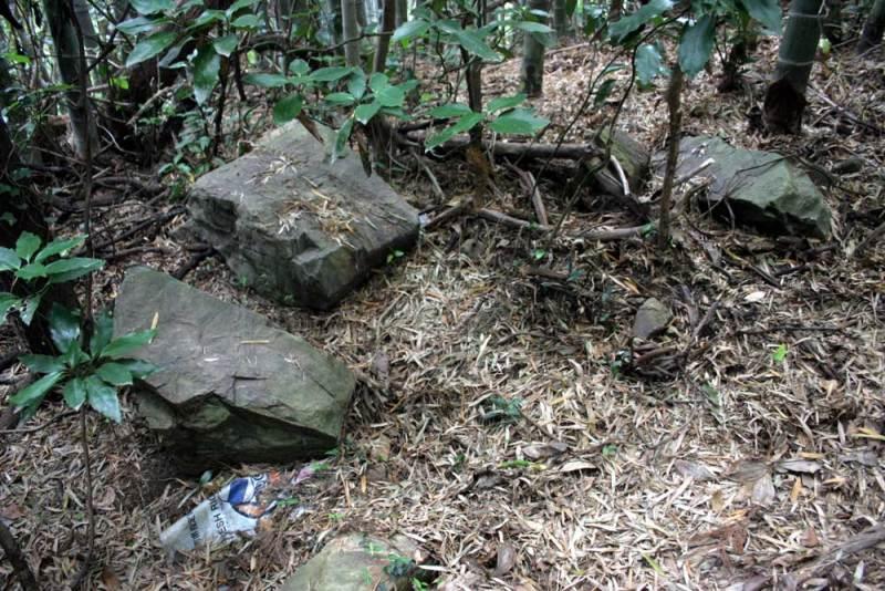 竹尾城/道端に石が