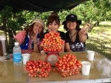 $渡邉観光櫻桃園のブログ-image