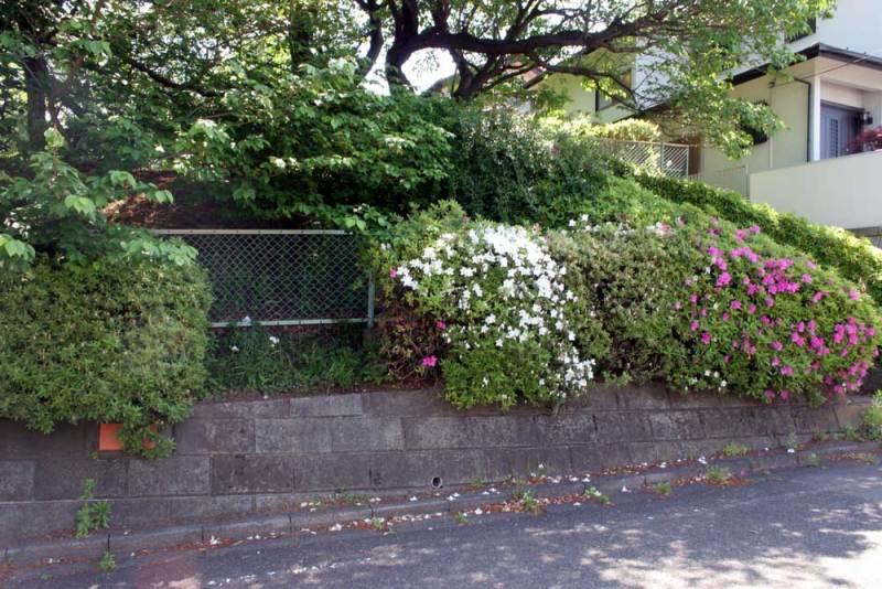 成瀬城/竪堀跡