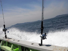 海釣り初心者のブログ