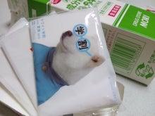 cleastarry★sweets sorairo cafe★-DSC_1188.JPG