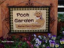 Pooh-Garden-看板