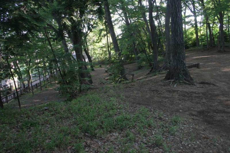 天神山砦/仙川沿いの斜面