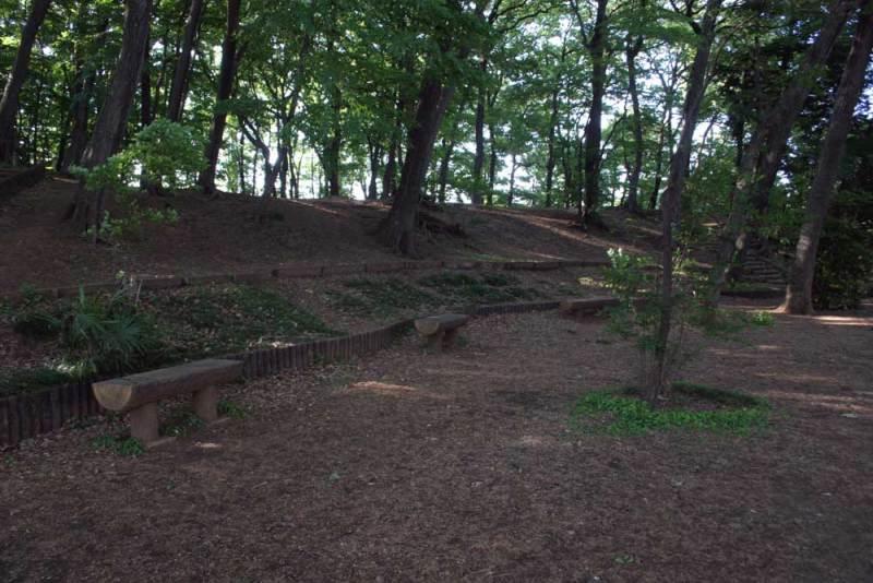 天神山砦/仙川側から見上げる