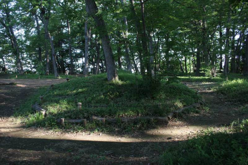 天神山砦/内部はほぼフラット