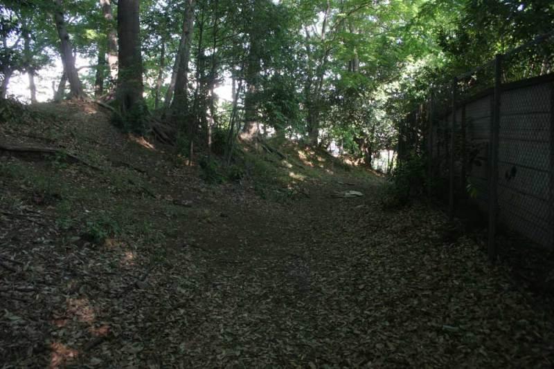 天神山砦/仙川の反対側にある空堀