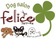 $・・・Dog salon フェリーチェ・・・