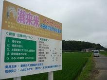 小島米店のブログ-水郷潮来米をブランド化に。