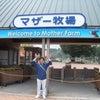 マザー牧場 ①の画像