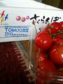 オカメインコのももちゃんと花教室と旅日記-DSC_0513.JPG