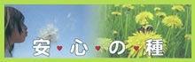 空・森・風…自然が教えてくれる♡いとおしさの魔法♡midorino蕾~山梨より愛をこめて~