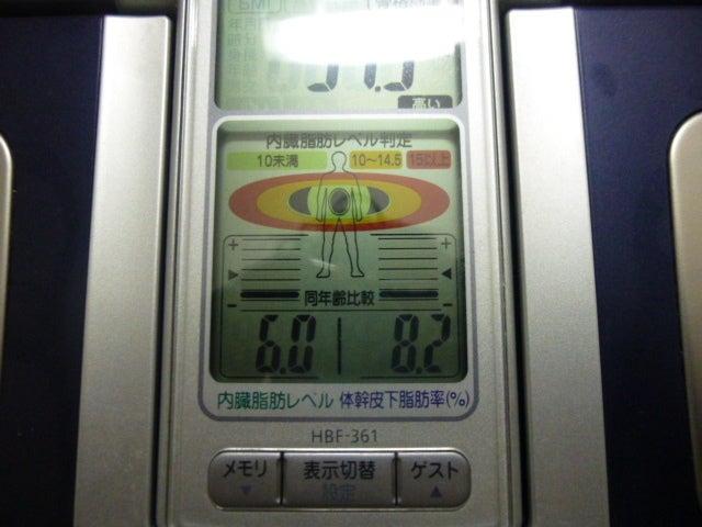 130629内臓脂肪