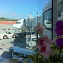 沖縄に行ってきました…