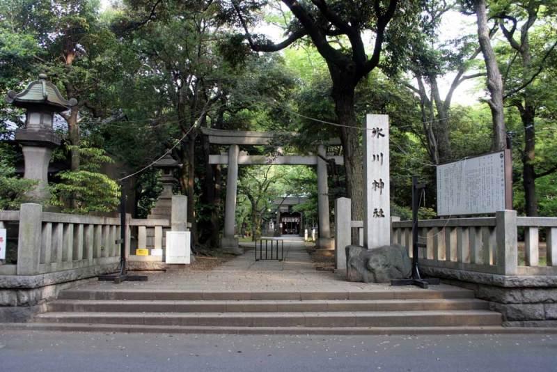 今井城/氷川神社