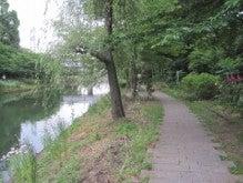 均太郎のブログ-朝の散歩道