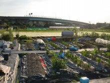 耕作放棄地を剣先スコップで畑に開拓!有機肥料を使い農薬無しで野菜を栽培する週2日の農作業記録 byウッチー-130701ウッチー式・今日の農作業の出来栄え0