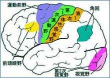 $「国試塾リハビリアカデミー」中島塾長のブログ