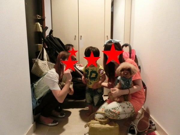 MOMOとMOMOママの気まぐれ日記☆
