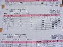 ドッグスポーツ-jp3
