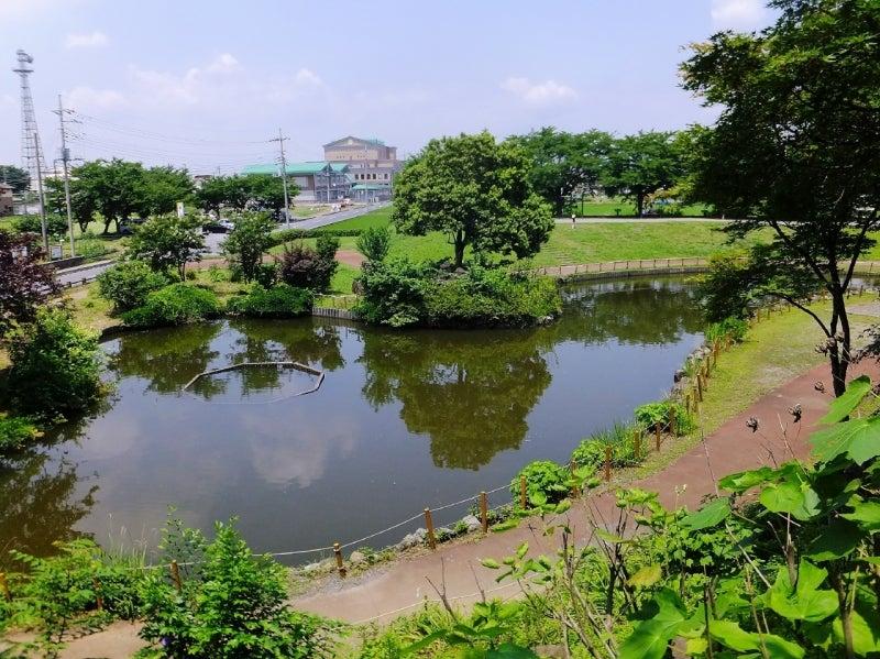 しらさぎ公園006