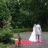 Happy Weddingの画像