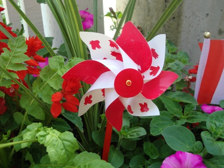 i Canada☆ベテランカウンセラーのいるバンクーバー無料現地留学エージェントのブログ-Jul 3'13 ⑥ i Canada