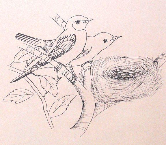 ちい庭日記-鳥の絵