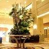 岡山市のホテルグランヴィアにて。の画像