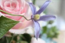 生花はやっぱり癒されます;