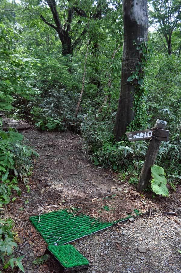$白神山地ツアーの白神なびスタッフブログ-2013年7月中旬の白神山地「二ツ森」1