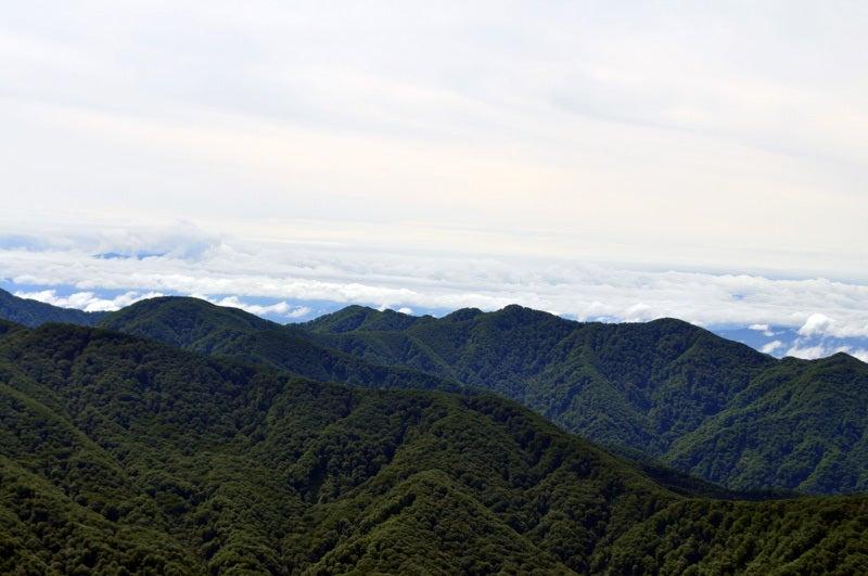 $白神山地ツアーの白神なびスタッフブログ-2013年7月中旬の白神山地「二ツ森」10
