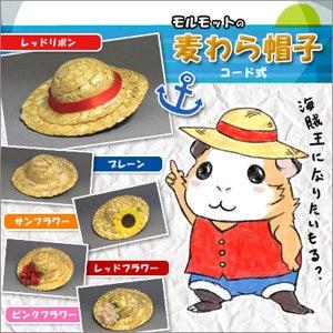 モルモットの麦わら帽子