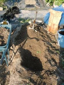 耕作放棄地を剣先スコップで畑に開拓!有機肥料を使い農薬無しで野菜を栽培する週2日の農作業記録 byウッチー-130709とうもろこし残渣を埋めて白菜用に土作り04