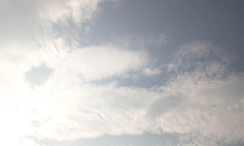 ★エレマリアより天使と共に愛と光と喜びと感謝を込めて。。。★エンジェリック*ヒーリングエナジーアーティスト Ere*Mariaのブログ♪-DSC_1548.JPG