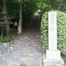 『鈴虫寺』