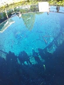 素敵やん-忍野八海 中池