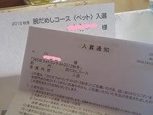 $アメリカンカール★MARINE's BLOG★