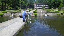 白根魚苑のブログ
