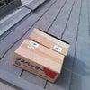 屋根の上は暑いんだせぇ~(^○^)の画像