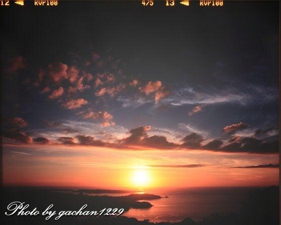 gachan1229のブログ「ツルに魅せられた男の記憶」-g