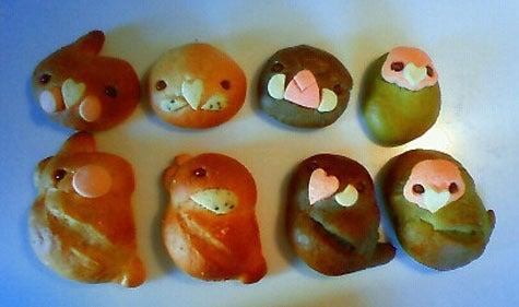 ようこそ!とりみカフェ!!~鳥カフェでの出来事や鳥写真~-ぽこの森名物とりがたパン♪