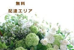 横浜の花屋*ブーケ&ギフト☆ナチュラルフラワーズ・エムフラット