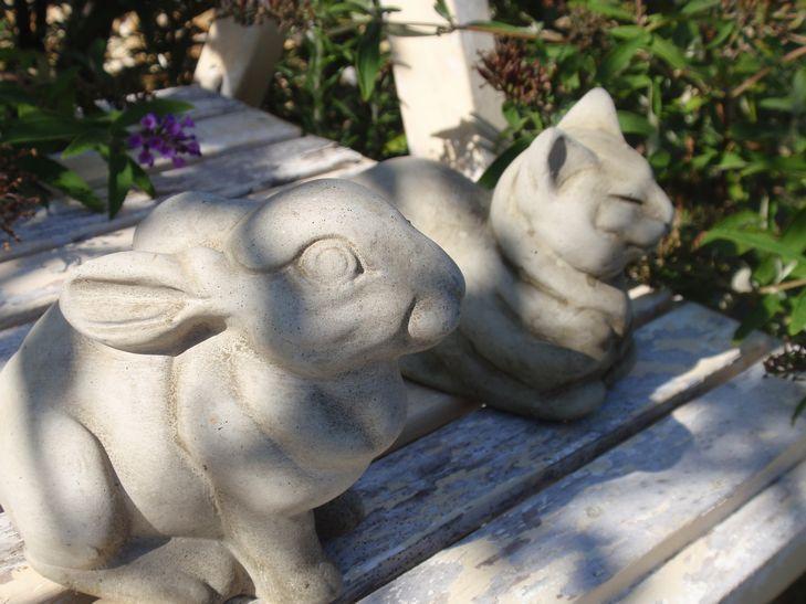 ちい庭日記-うさぎと猫