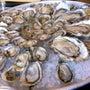 【夏期でも牡蛎】一年…