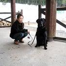 ドッグアパレル専門誌Cuun7月号/妖精の森コテージラウル♪(犬と宿泊/クーン)の記事より
