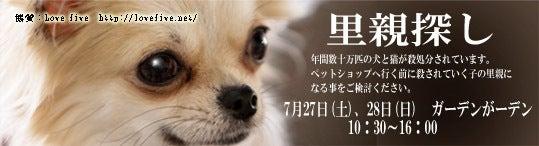 $動物愛護譲渡促進団体 LoveFiveのブログ