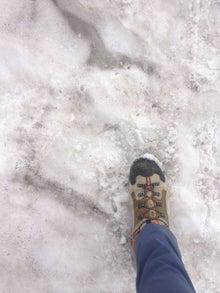 $crayonics.のブログ-snow step