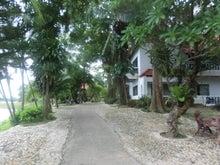 タイ暮らし-10